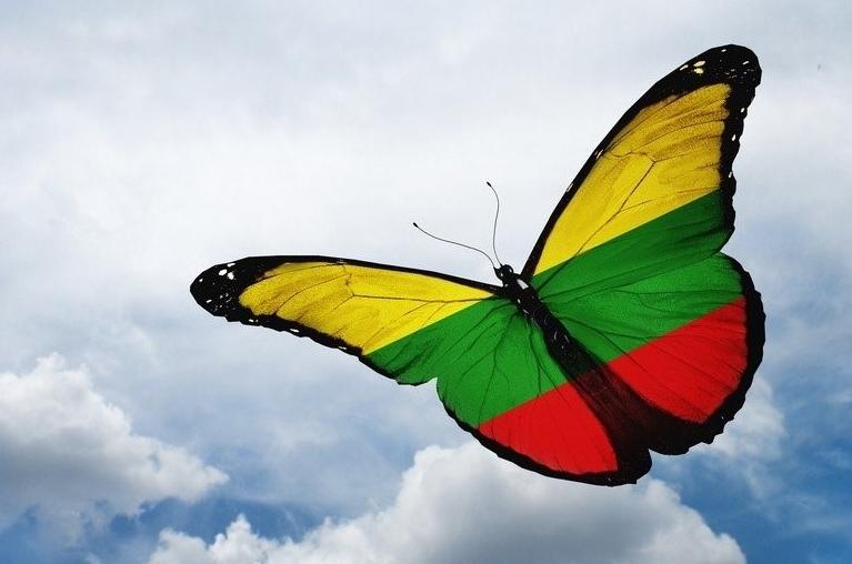 Laisves-drugelis-crop.jpg