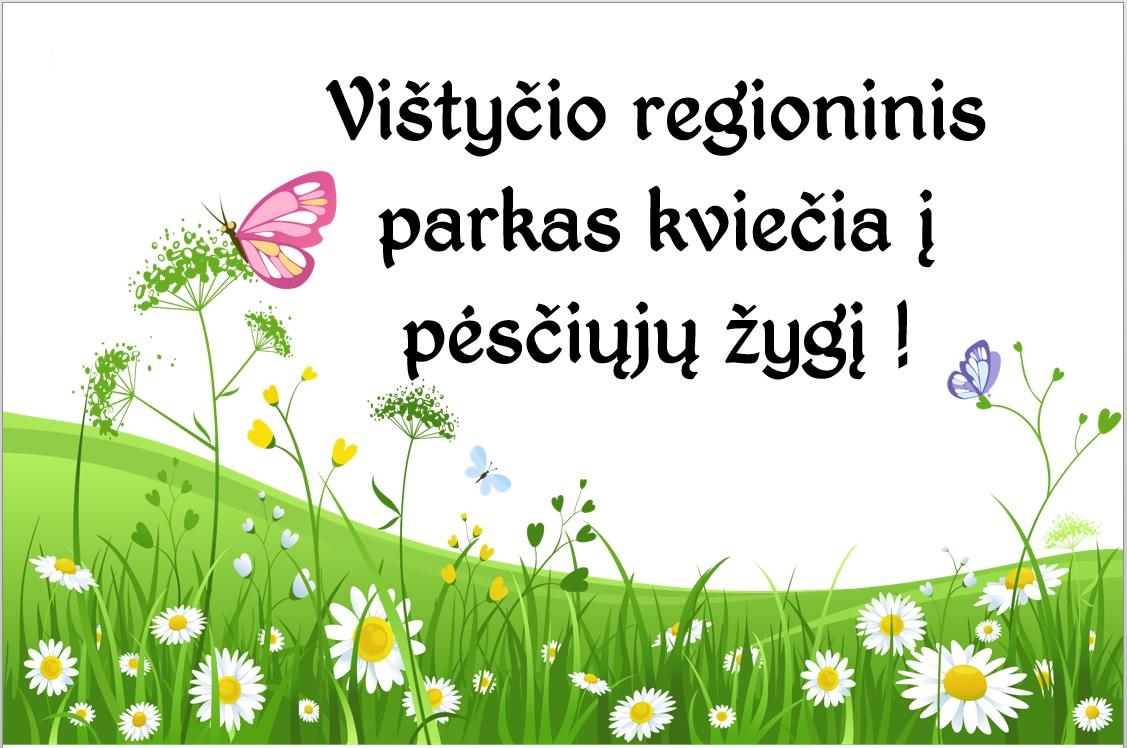 2020-Zygis-po-Kylininkus.jpg